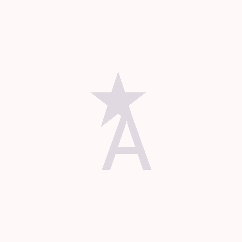 '.esc_attr__('icon', 'wisemove').'